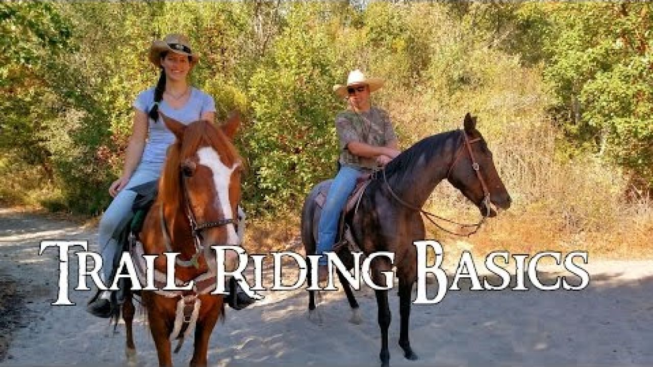 Happy Hobbit: Trail Riding Basics - Episode 70
