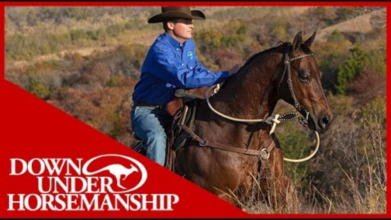 Clinton Anderson: Fundamentals on the Trail, Part 1 - Downunder Horsemanship
