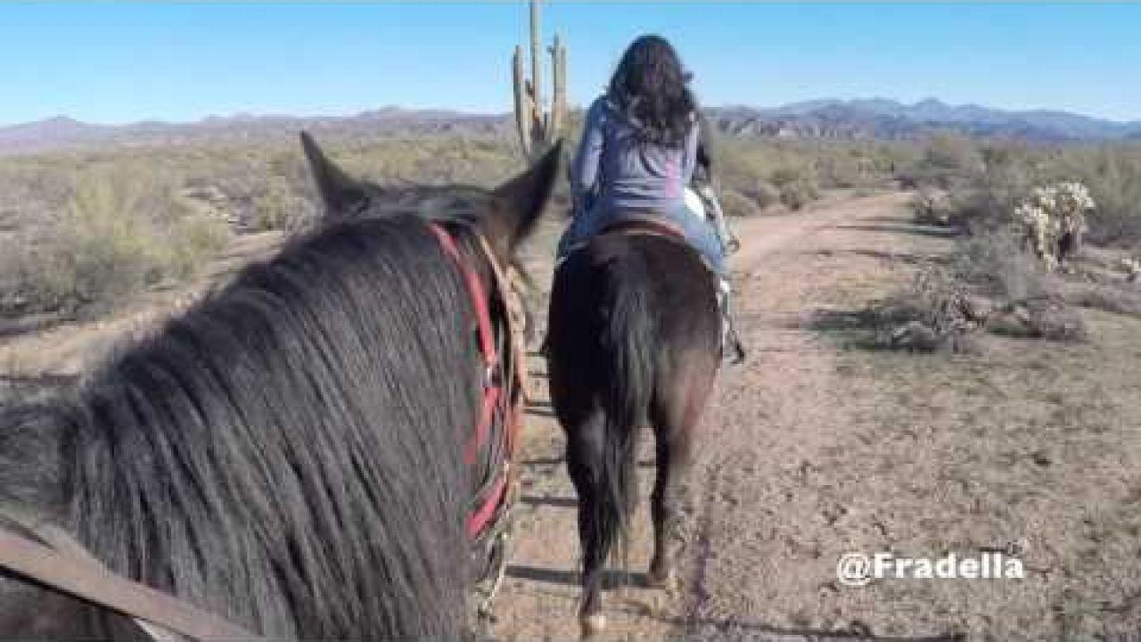Horseback Riding in Arizona